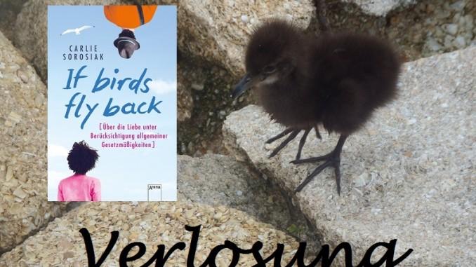 Verlosung If Birds Fly Back