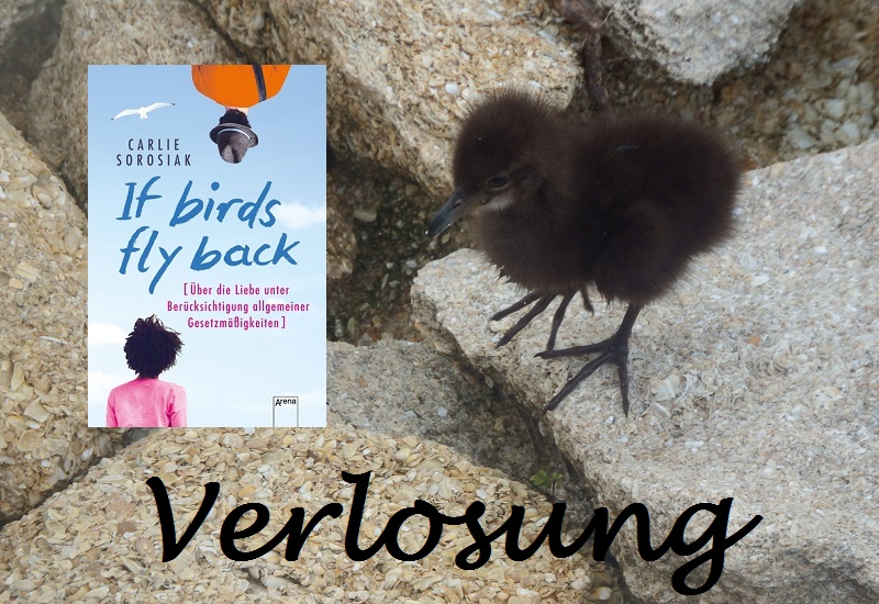 Verlosung If Birds Fly Back
