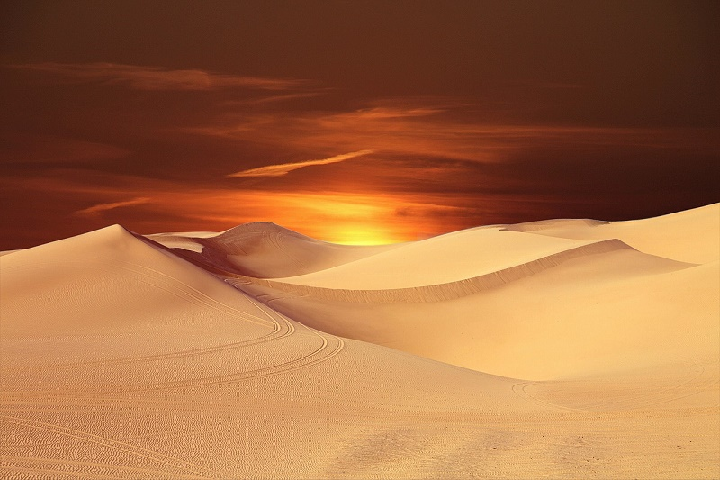Wüste abends